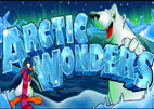 Artic Wonders